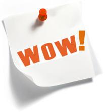 wow customer service, WOWplace, Sandy Geroux motivational speaker logo